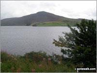 Walk Mynydd Nodol walking UK Mountains in The Arenigs Area Snowdonia National Park Gwynedd    Wales