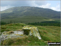 Walk Moel Cae'r-defaid walking UK Mountains in The Arenigs Area Snowdonia National Park Gwynedd    Wales