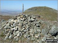 Walk Arenig Fawr (South Top) walking UK Mountains in The Arenigs Area Snowdonia National Park Gwynedd    Wales