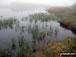 Llyn Dywarchen on Moel Ysgyfarnogod in mist
